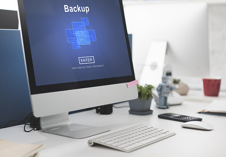 Backup and Recovery, Storage Database, Safety, Security